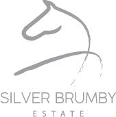 client Silver Brumby